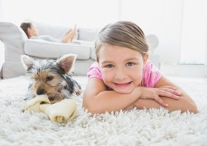 Domestic Carpet Cleaning Brisbane Northside